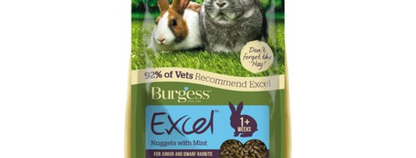 Bugress Excel Nuggets with Mint