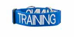 Friendly Dog Collars - Training