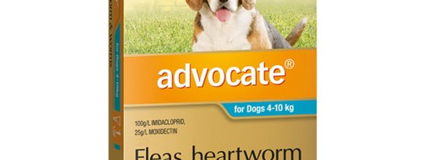 Bayer - Advocate - 4-10kg 6PK - Fleas, Heartworm and Worms