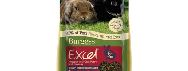 Burgess Excel Nuggets with Cranberry and Ginseng