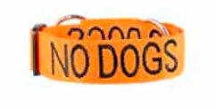 Friendly Dog Collars - No Dog