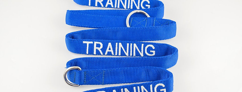 Friendly Dog Collars Training Lead