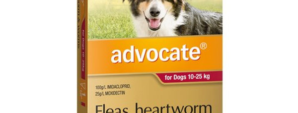 Advocate Flea, Heartworm and Worms 10-25kg 3PK