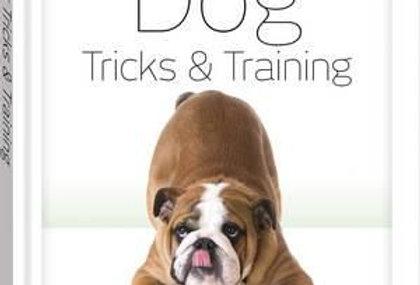 Essential Dog Tricks & Training