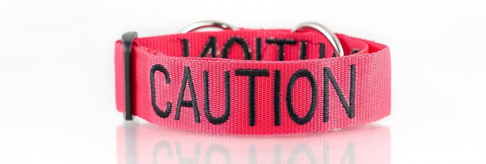 Friendly Dog Collars - Caution