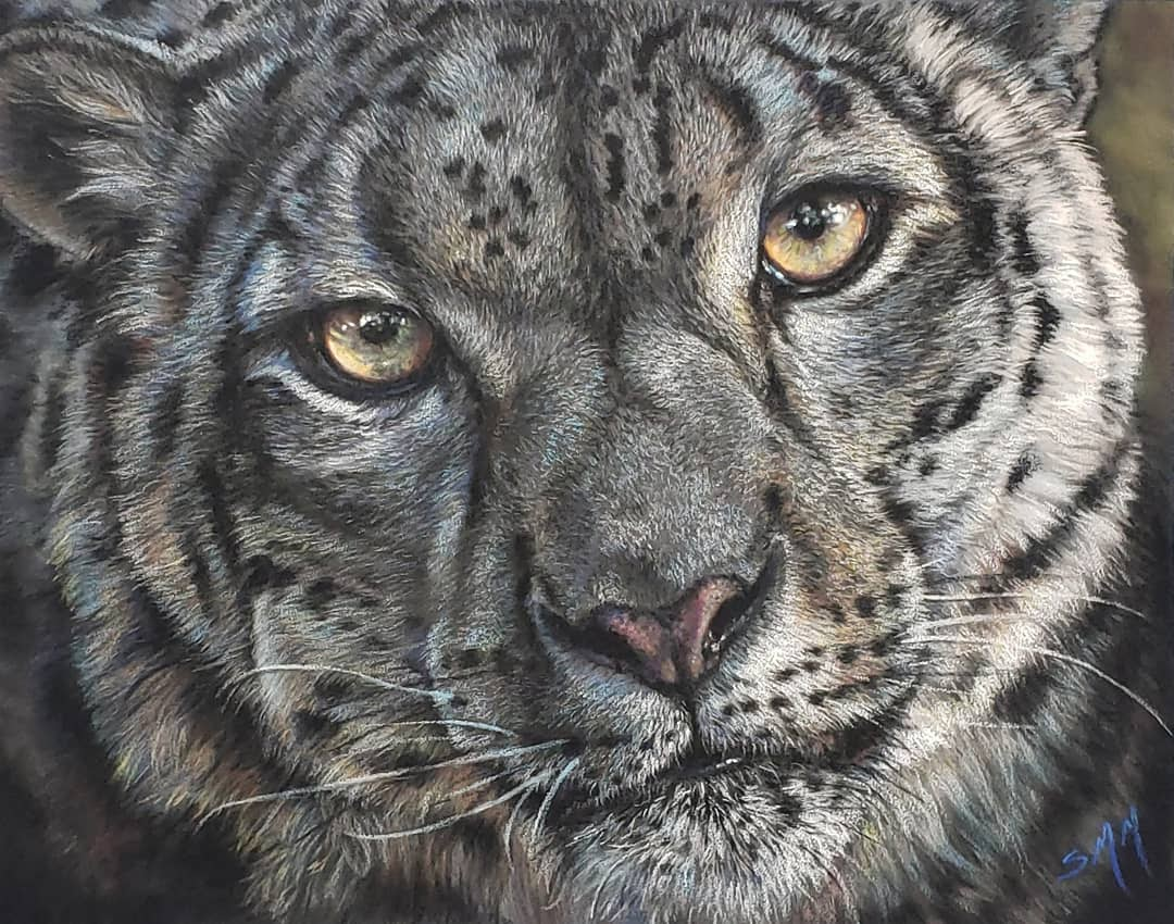 Snow Leopard Pastel - SOLD!
