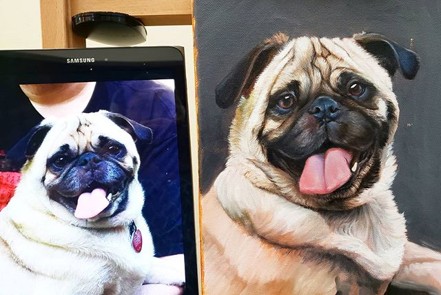 Pug Work In Progress 9x12 - SOLD