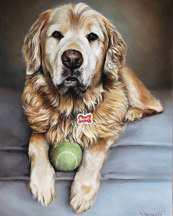 Biscuit, Commission 9x12 - SOLD!