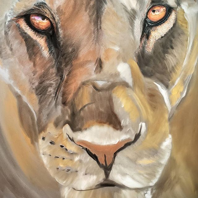 Lioness Work In Progress 14x18 - Availab