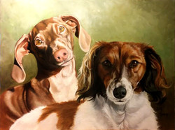 Dachshund Commission (excuse the photo q