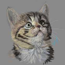Digital Sketch For Fun