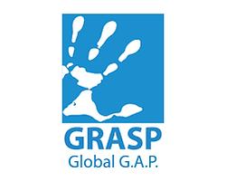 logo-grasp.png