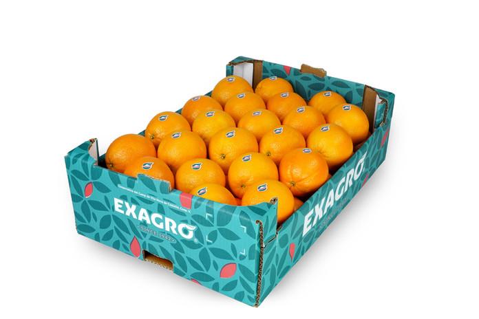 Naranja Exagro encajado 16Kg