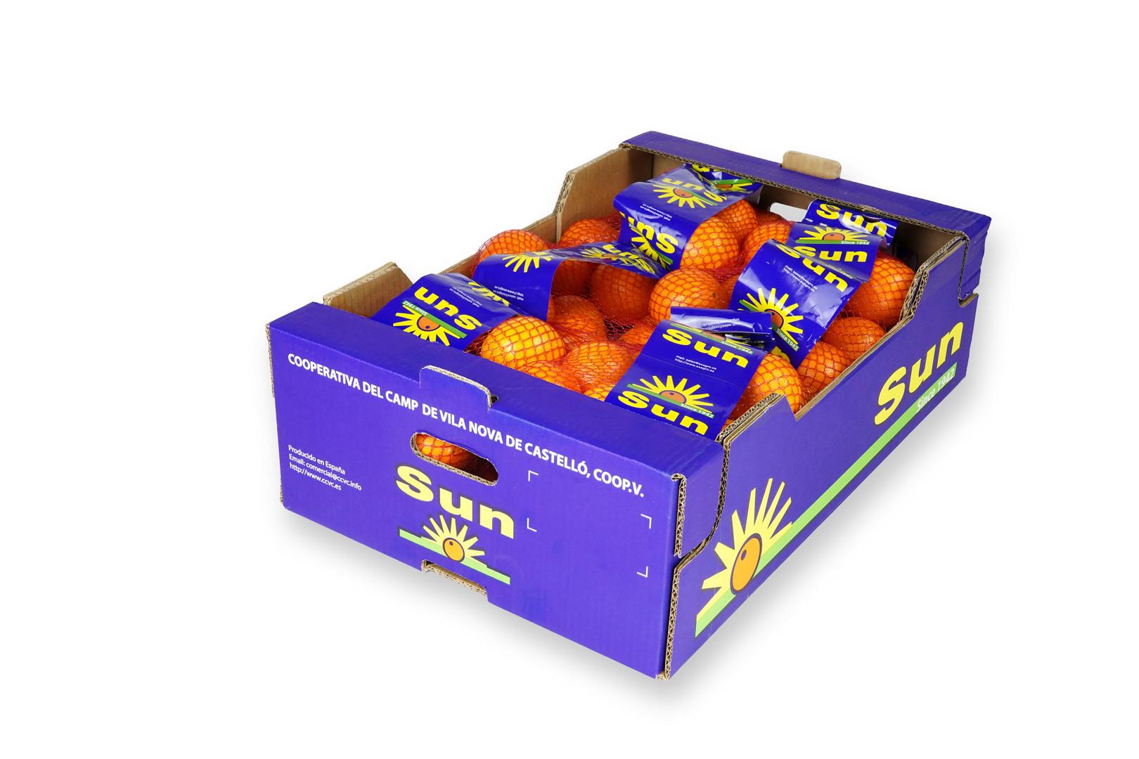 Naranja Sun encajado malla 14Kg