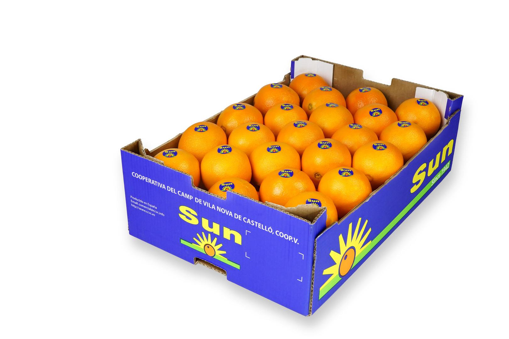 Naranja Sun encajado 16Kg