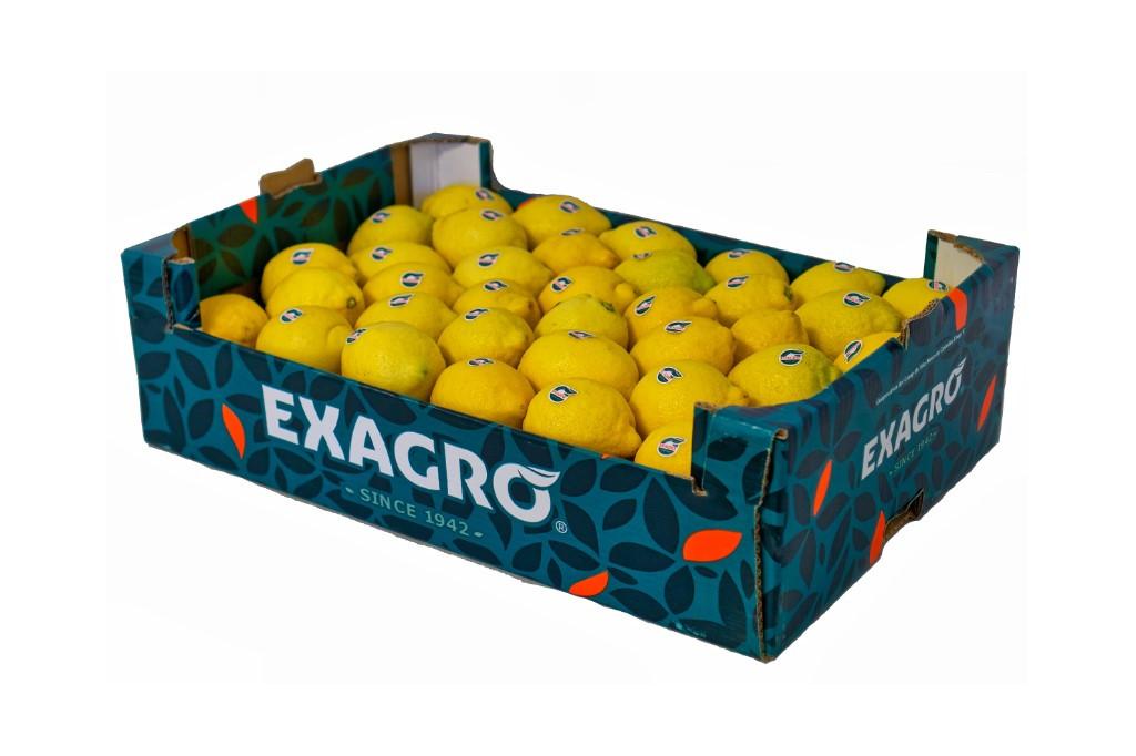 Limón Exagro encajado 15Kg