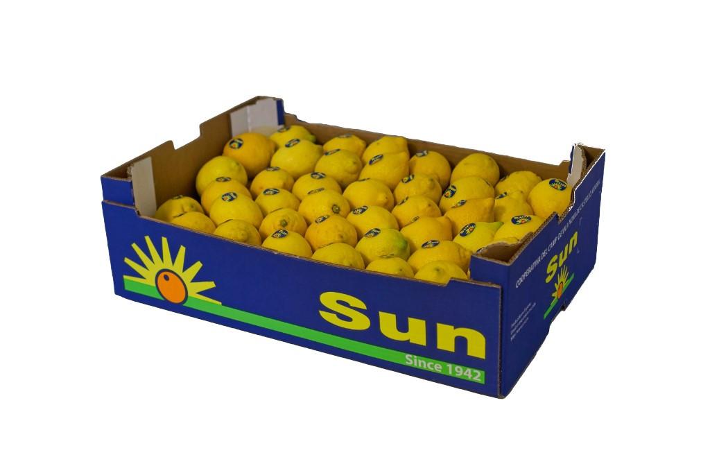 Limón Sun encajado 15Kg