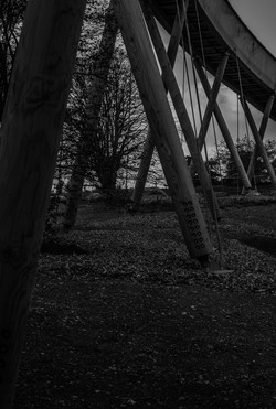 Westonbirt skytrail