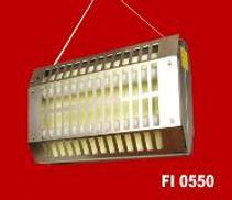 FI05501-187x161 (1).jpg