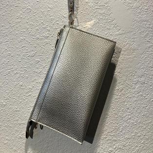 Silver Clutch $28