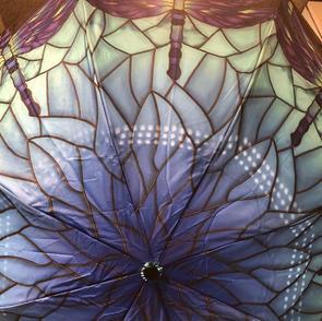 Dragon Fly Reverse Close Umbrella $37