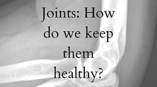 Joints: How Do We Keep Them Healthy?