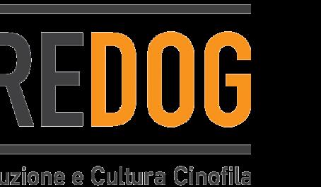 La Dog School di Anzio entra a far parte dell'Accademia di Istruzione e Cultura Cinofila DobreDog !