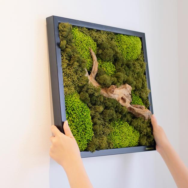 A Black Wall-hung Frame