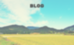 BLOG980_600 (1).png