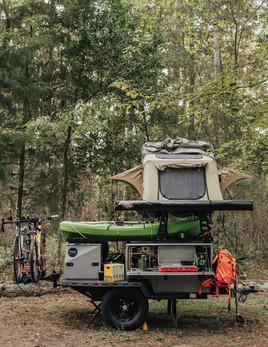 Woolly Bear Sam Houston National Forest-31.jpg