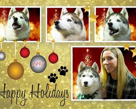 Kia Holiday.jpg