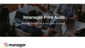 How to manage an audit remotely.