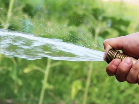 Abstimmung: «2xJa» für sauberes Wasser, fruchtbaren Boden und unsere Gesundheit