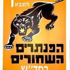 Israeli-black-panthers.jpg