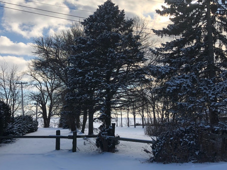 Winter @OxleyBeachHouseInc.