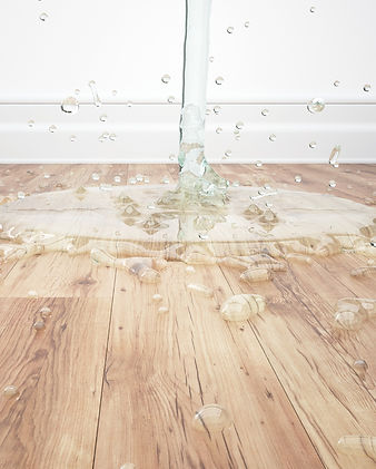 100% 防水 超耐磨 卡扣 WPC LVT SPC 零甲醛 寵物 友善 木 地板