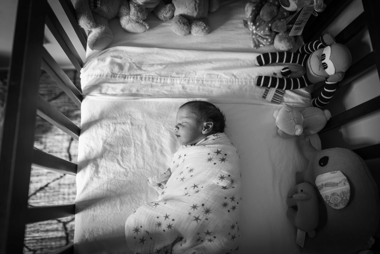 Newborn Photography Hamilton