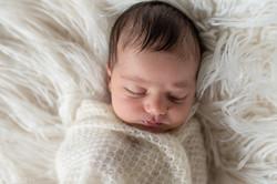 Hamilton Newborn Photography