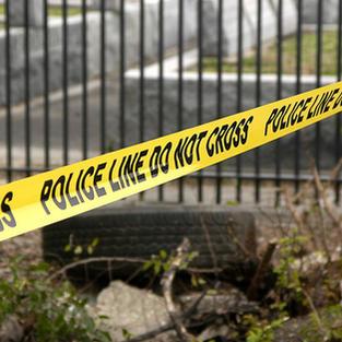 Murder/Serious Assault