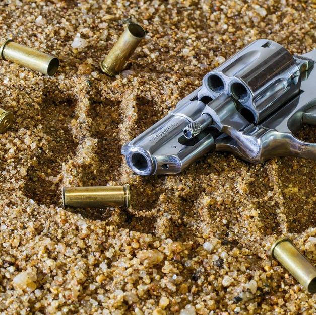Felon/Stolen Firearm