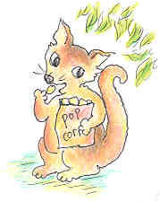 poppingpossum.jpg