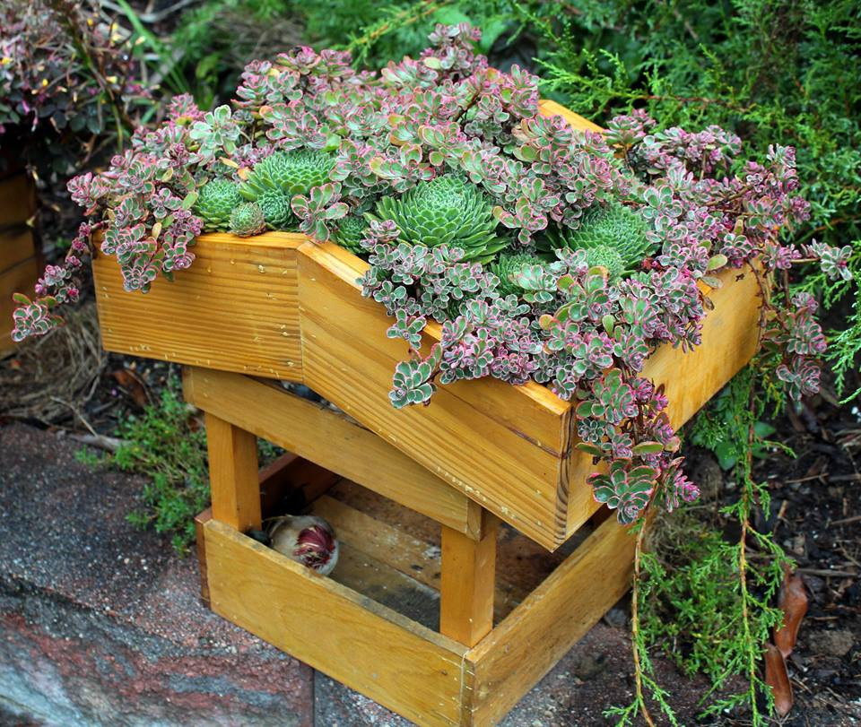 bird feeder with a green roof made out of repurposed wooded pallets