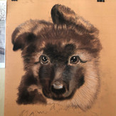 13 Years Old Student | Beginner | Individual lessons | Dry Pastel