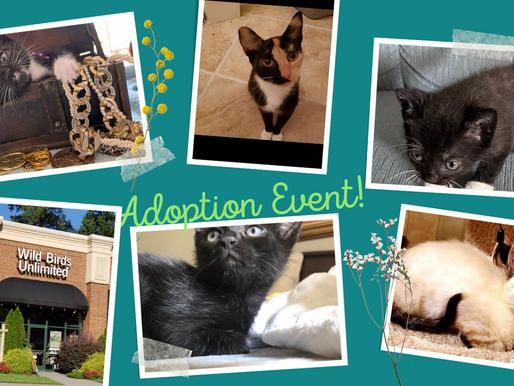 Adoption event Saturday 9/11/2021
