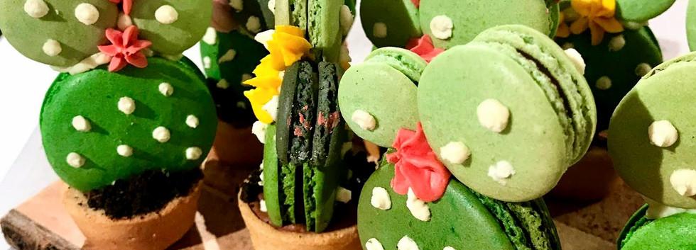 Cacti Macarons