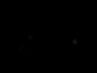BST Brand Partner - adidas