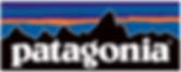 BST Brand Partner - Patagonia