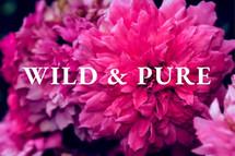 Wild & Pure LOGO.jpg
