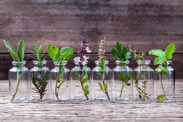 Bottle of essential oil with herbs holy basil flower, basil flower,rosemary,oregano, sage,