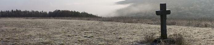 frost-H.jpg